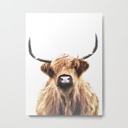 Highland Cow Portrait Metal Print