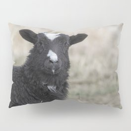 Here's Looking at You Kid Pillow Sham