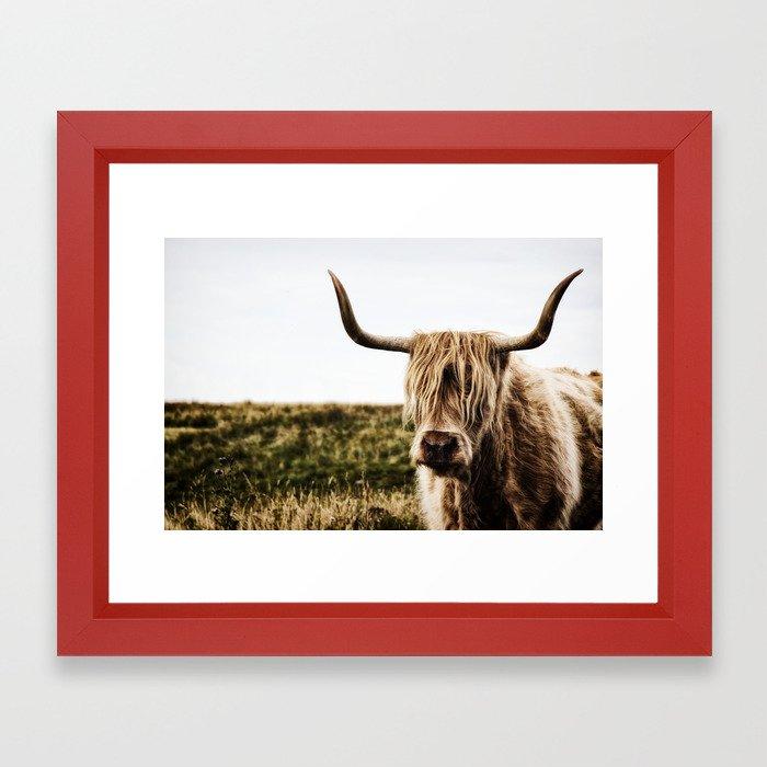 Highland Cow - color Framed Art Print