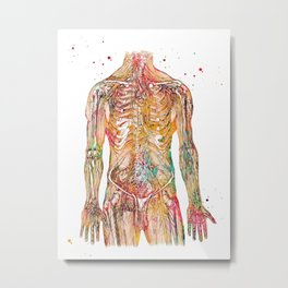 Human Body Metal Print