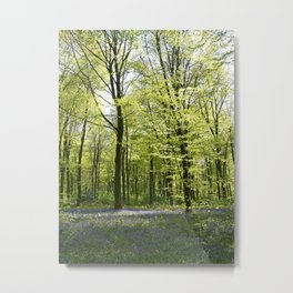 Deep in the Bluebell Wood Metal Print