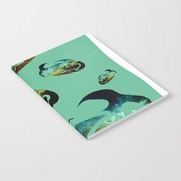 StarFish Notebook