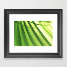 Structure of a palm tree Framed Art Print