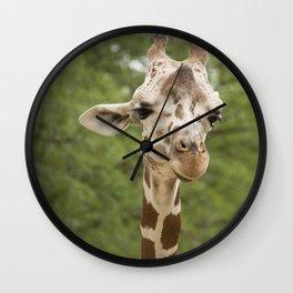 Gentle Giraffe Wall Clock