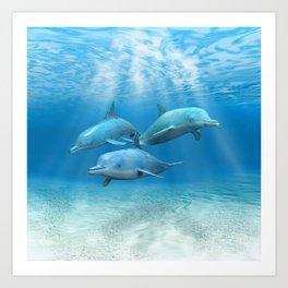 Pod Of Swimming Dolphins Art Print