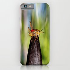 Precariously Perched Slim Case iPhone 6s