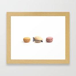 Cute Turtle Macaron Framed Art Print