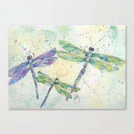 Xenas Dragonfly Canvas Print