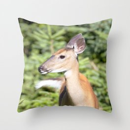 Watercolor Deer, Eastern Whitetail 02, Cape Breton, Canada, A Curious Look Throw Pillow