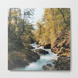 Vintgar Gorge, Slovenia Metal Print