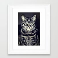 austin Framed Art Prints featuring Austin by Rachel's Pet Portraits