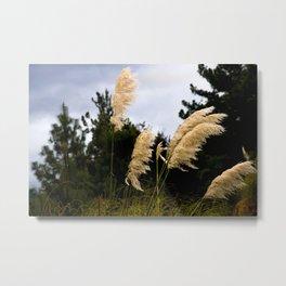 Grass & Green Metal Print