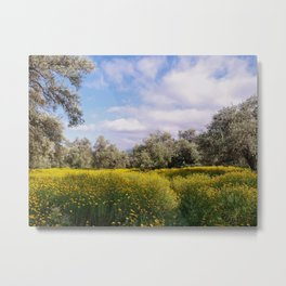 Spring Meadow in Cyprus Metal Print