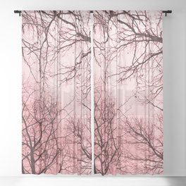 Naked trees tops, pink sky Sheer Curtain