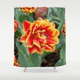 Sensual Touch Latte Tulip Shower Curtain