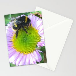 Bees love purple daisies Stationery Cards