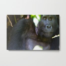 Just Thought of Something Funny. Metal Print