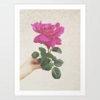 Melrose Art Print