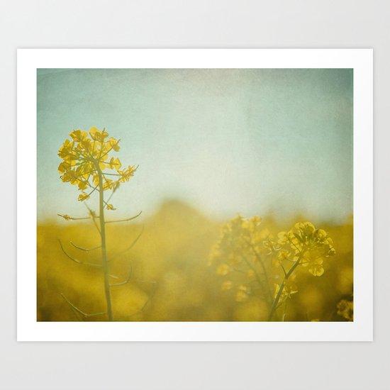 Spring Sun Art Print