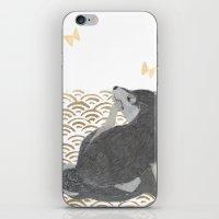 shiba inu iPhone & iPod Skins featuring SHIBA INU, DOG, SEIGAIHA  by Bless Hue