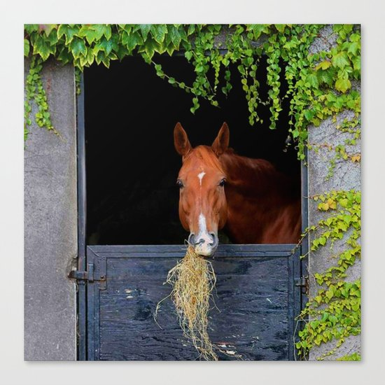 Home is where the Horse is Canvas Print