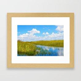 Florida Welands Framed Art Print