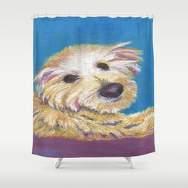 Chance, the Therapy Dog Shower Curtain