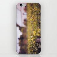 wine iPhone & iPod Skins featuring Wine by Simon Laroche