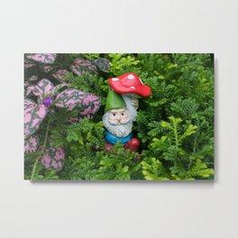 Hidden Gnome Metal Print