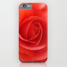 Rose Delicate iPhone 6s Slim Case