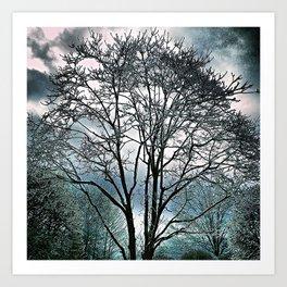 Tree wonderland Art Print