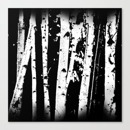 Black and White Birch Trees Fade Out Canvas Print