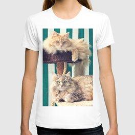 Siberian cats on the cat tree T-shirt
