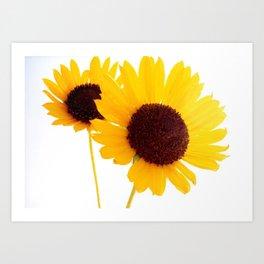 Happy Couple of Sunflowers Art Print