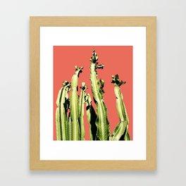 Cactus - red Framed Art Print