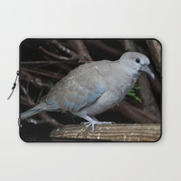Baby Collared Dove Laptop Sleeve