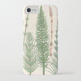 Botanical Horsetail Plants iPhone Case