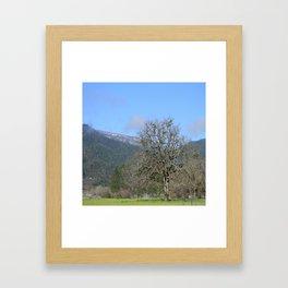 Spring in Trinity County, California Framed Art Print