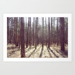 nature hike. Art Print