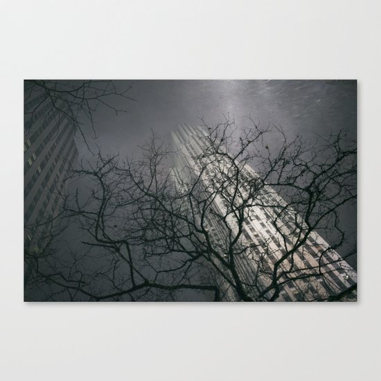 The Rock Canvas Print
