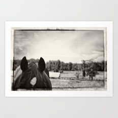In the Quiet Country Art Print