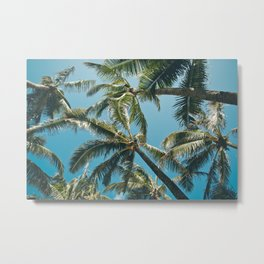 Kuau Palms Paia Maui Hawaii Metal Print
