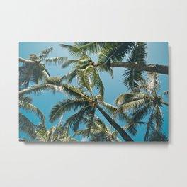 Kuau Palms Paia Maui Hawaii Metal Print