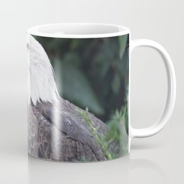 National Aviary - Pittsburgh - Bald Eagle 4 Coffee Mug