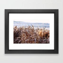 frozen grass Framed Art Print