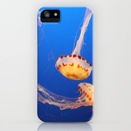 Dance Of The Medusa iPhone Case