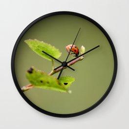 Ladybug Macrosphere Wall Clock