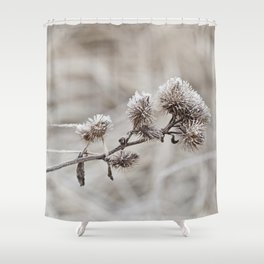 Early frost winter still life Shower Curtain
