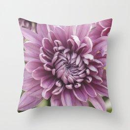 Soft Pink Mum, Nature Photography, Flower, Floral Print, Flower Print, Nature Print, Macro Art Throw Pillow