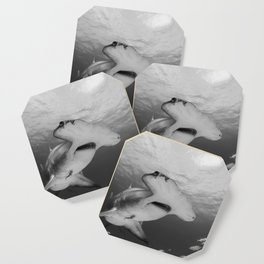 Greatness in Black & White Coaster